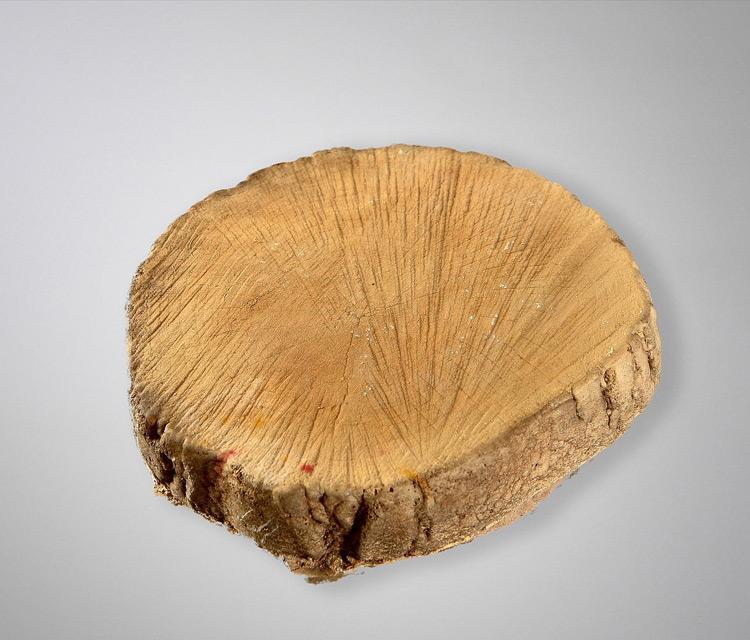 Круглый деревянный пень (2)